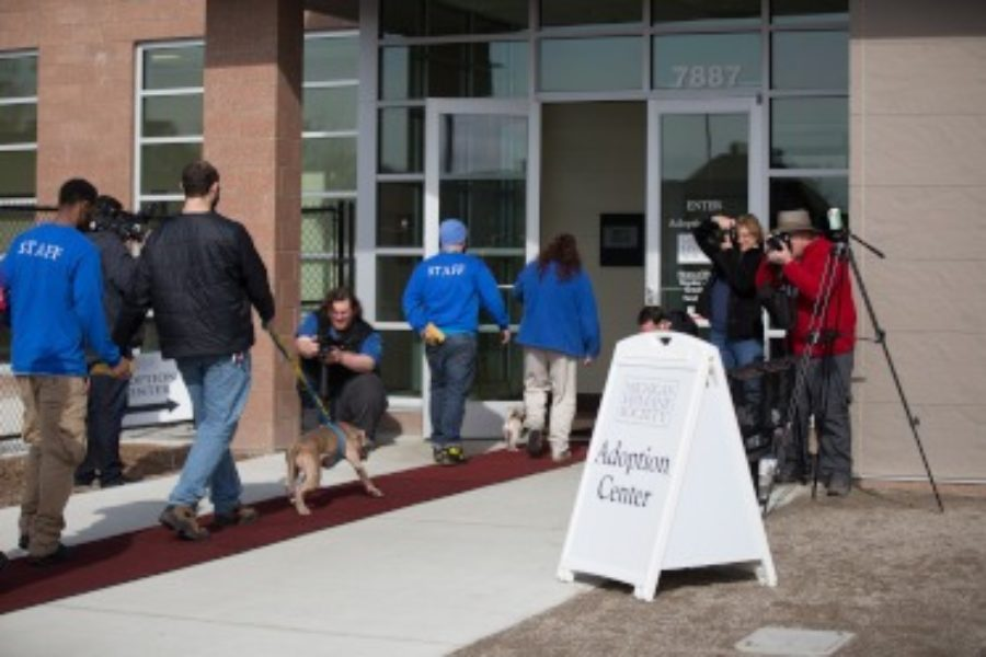 Michigan Humane Society, New Detroit Animal Care Campus